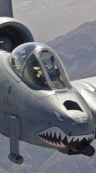 A10 Warthog 02.jpg
