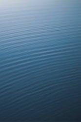 Water 014.jpg