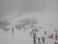 snow_dump.jpg
