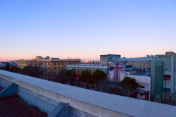 morning_roof.jpg