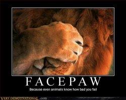 facepaw.jpg