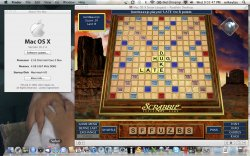 Scrabble in Lion.jpg