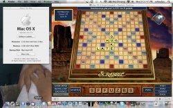 Scrabble in Lion.jpg
