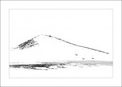 geese&hill_ink.jpg