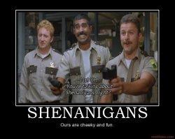 shenanigans-super-troopers-shenanigans-cheeky-fun-demotivational-poster-1258849767.jpg
