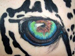 Detail, Left Eye.JPG