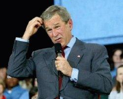 Bush confused 2.1_a.jpg