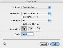 Page Setup.jpg