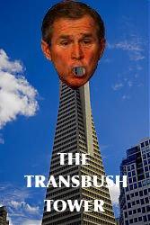 transbush.jpg