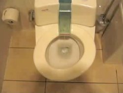 german_toilet.jpg