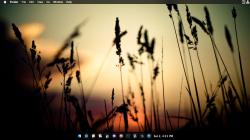 Screen Shot 2015-05-02 at 4.31.59 PM.png