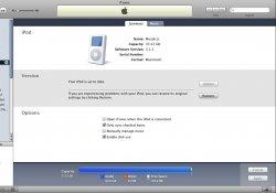 iPodscr.jpg
