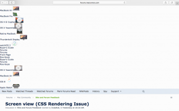 MR CSS Issue .png