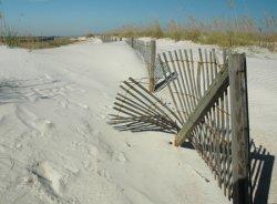 dune fence small.jpg