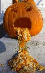 pumpkin-barf.jpg