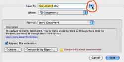 WordDoc.jpg