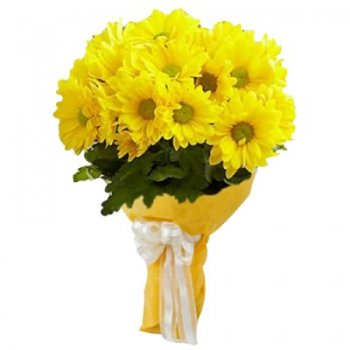 18yellow_gerberasbunch-400x400.jpg