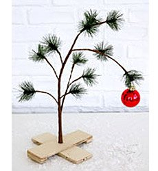 20051123_charliebrownxmastree.jpg