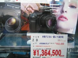 IMG_1548 copy.JPG