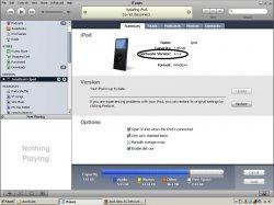 ipod nano sofware update.JPG