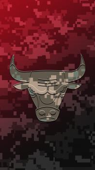 Chicago Bulls Camo 02