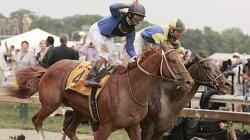 horse_ap_curlin_412.jpg