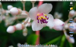 Fullscreen.jpg