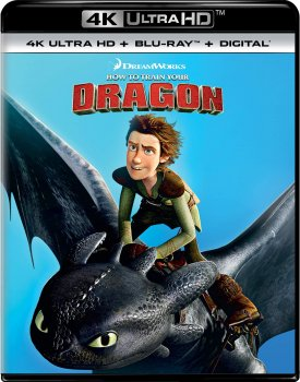 How to Train You Dragon (2014).jpg