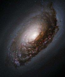 blackeyegalaxy.jpg