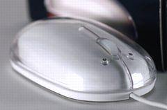 mouse_240_1.jpg