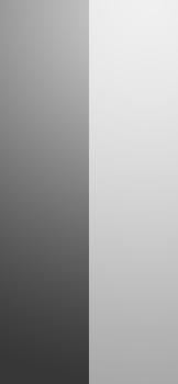 iOS14_dualtone_monochrome.png