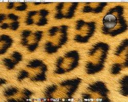 My Desktop 2.jpg