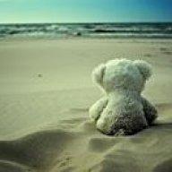 SandyBear
