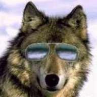 wolfshades